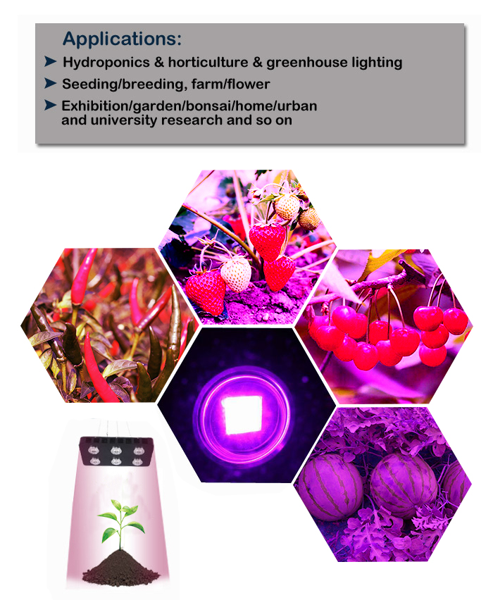 RGB Grow Light Applications: Hydroponics, horticulture